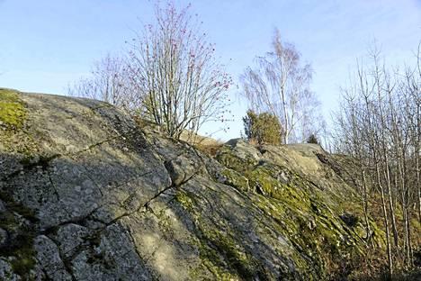 Kaavaillun puiston näkyvin maisemaelementti on kalliokohoama, jonka raisiolaiset tuntevat Kankareen kalliona. Kankare oli Halavan torpan vieressä ollut tila.