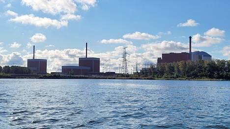 Vieraslajina Suomenkin merialueelle asettunutta kaspianpolyyppia joudutaan torjumaan kloorauksella. Runkopolyyppikasvustot haittaavat ydinvoimaloiden jäähdytysjärjestelmien toimivuutta.