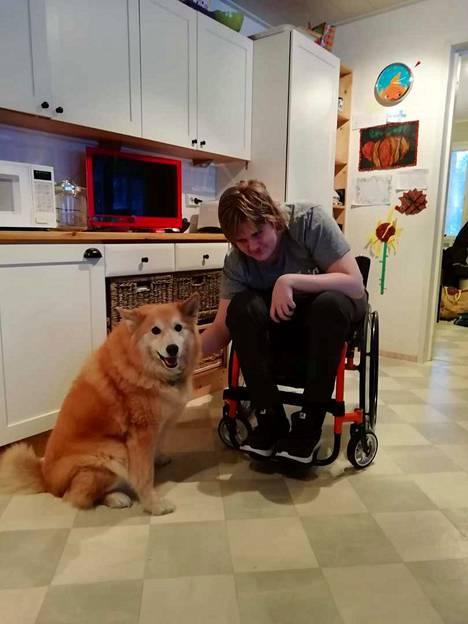Aleksi halvaantui kaksi vuotta sitten yllättäen kesken koulupäivän. Hänen vanhempansa kiistelevät Porin kaupungin kanssa siitä, mikä on oikea määrä omaishoidontukea viisilapsiselle perheelle, Kuvassa toinen perheen koirista eli Ruska Aleksin seurana.