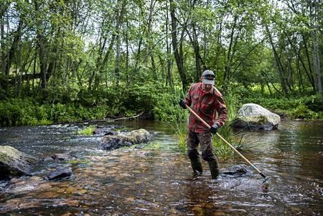 Kalastusmestari Kimmo Puosi tasoittaa uutta kutusoraikkoa Kaasmarkunjoen Tehtaankoskilla. Soraikot muotoillaan sellaisiksi, että ne madaltuvat alavirran suuntaan mentäessä.