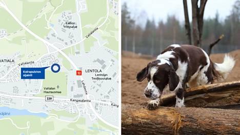 Koirapuistoa on toivottu Kangasalle ainakin kaksi vuosikymmentä. Nyt koirien ja heidän omistajiensa toive on viimein toteutumassa, kun koirapuisto avautuu arviolta marraskuun lopussa.
