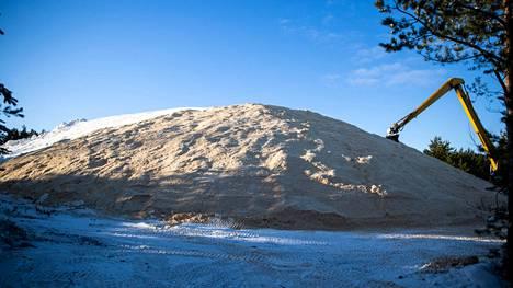 Tykkilunta kasattiin viime vuonna suureen sahanpurulla peitettyyn aumaan Porin metsässä. Kuva viime talvelta.