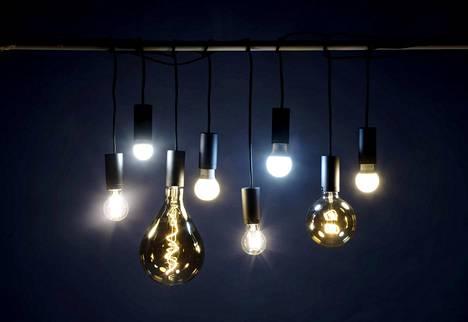 Valitse lamppu värin, tehon, koon, hinnan tai käyttötarkoituksen mukaan. Kuvassa Pirkan 7 watin filamenttilamppu, Airamin 5,5 watin mainoslamppu, Northlightin himmennettävä 5 watin filamenttilamppu, Philipsin 5,5 watin led-lamppu, Bilteman 4,4 watin kirkas filamenttilamppu, Airamin 8,5 watin päivänvalolamppu, Northlightin 0,6 watin filamenttilamppu ja Ikean 6 watin lamppu.