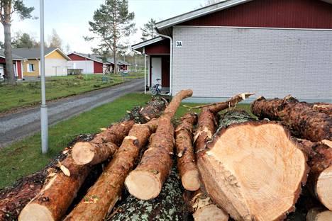 Lukijan mielestä puistomaisuus menetettiin, kun Oloneuvoksentien puita kaadettiin harkitsemattomasti.