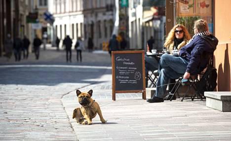 Ihmiset ovat alkaneet palata Tallinnan vanhaankaupunkiin, kun liikkeet ja kahvilat ovat avanneet ovensa.