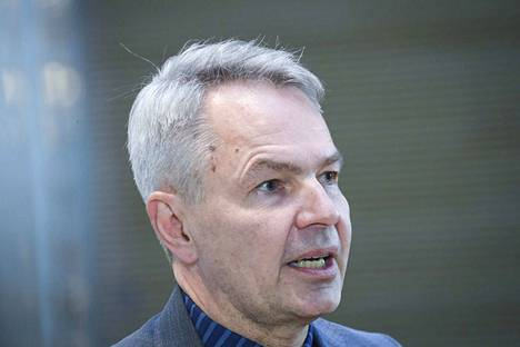 Vihreiden puheenjohtaja Pekka Haavisto haluaa valtiovallalle lisää keinoja puuttua metsienkäyttöön.