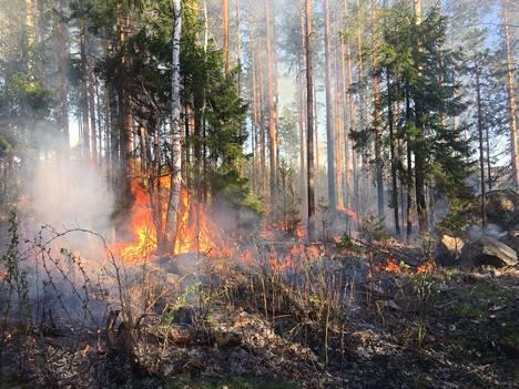 Maastoa paloi Porin Lyttylässä toukokuussa 2018. Ilmastonmuutoksen pidentämien kuumien ja kuivien jaksojen aikana myös metsäpalovaara lisääntyy. Etenkin Etelä-Suomessa metsäpalojen määrän ja voimakkuuden ennustetaan kasvavan hieman ilmastonmuutoksen myötä.