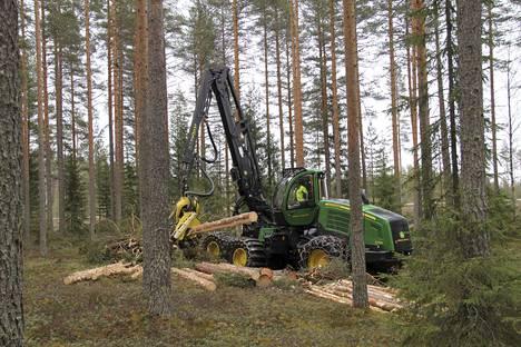 Suomen sahatavaran tuotannon arvioidaan tänä vuonna hieman vähenevän 11,6 miljoonaan kuutiometriin. Kuvituskuva.