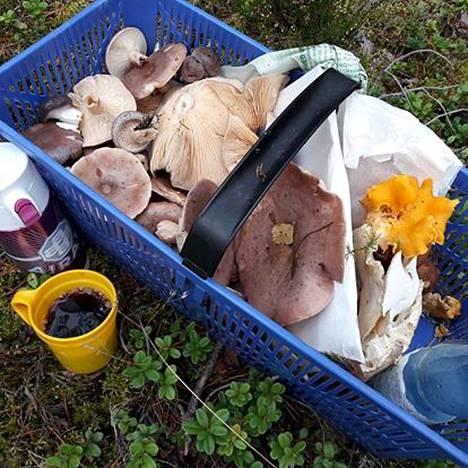 Kuva viime syksyn sieniretkeltä.