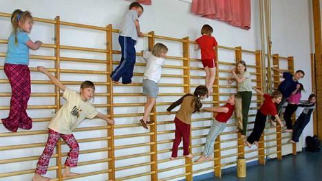 Suomen mallin tarkoituksena on mahdollistaa jokaiselle lapselle ja nuorelle mieluisa ja maksuton harrastus koulupäivän yhteydessä.