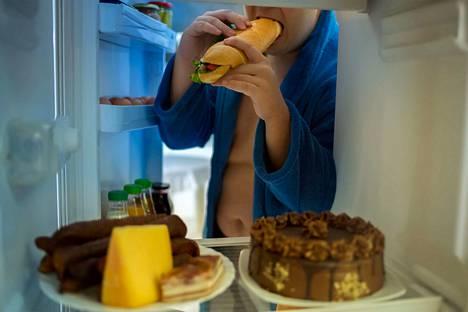 Suomalaisten tavat käyttää ja varastoida ruokaa on suuressa osassa lihavuuden syntymisessä, uskoo ravitsemustieteen professori Mikael Fogelholm. – Olisi mielenkiintoista nähdä tilasto suomalaisten jääkaapin koon kasvamisen ja lihavuuden yleistymisen yhteydestä.