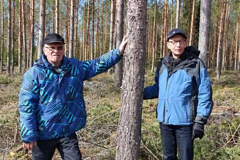 Raimo Rekola on työskennellyt Kalle Aitasalon suvun metsien parissa jo 1960-luvulta lähtien.