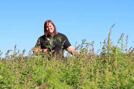 Annina Luotonen on viittä vaille valmis agrologi, joten tilalla on tietotaitoa kokeilla myös öljyhamppua.