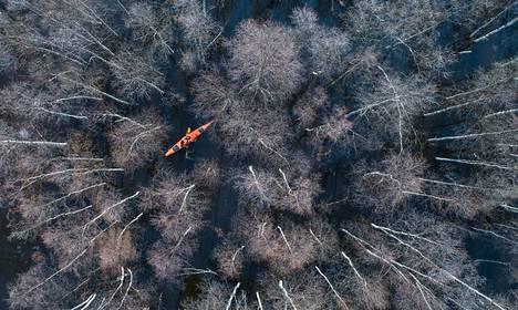 Melonta-niminen kuva voitti Luonto ja ihminen -sarjan.