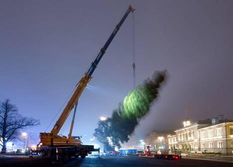 Tampereen Keskustorin joulukuusi nostettiin paikoilleen varhain keskiviikkoaamuna.