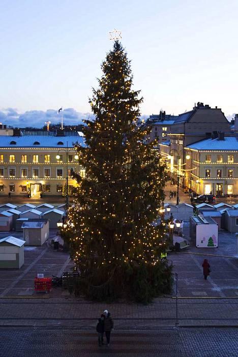 Helsingin joulukuusi.