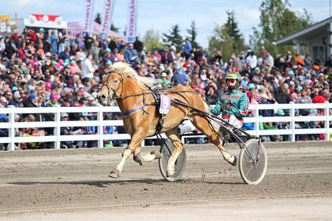 Viime vuoden Lahden kuninkuusraveissa Hiioppi sijoittui pikkukunkkukisassa kolmanneksi.