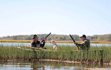 Karvian Suomijärvi on kuuluisa vesilintujärvi. Metsästämässä Jouni Moisio ja Sami Nivuslammi. Vesilintujen metsästyskausi alkaa tänään kello 12.