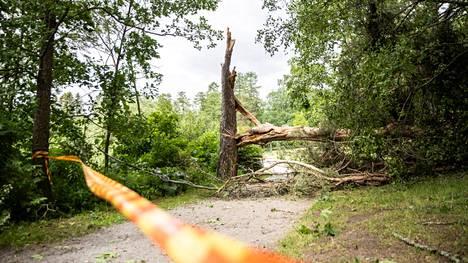 Rosendahlin rannassa oli nähtävillä tiistaiaamuna Vieno-myrskyn aiheuttamaa tuhoa.