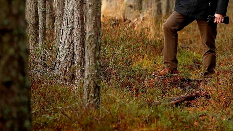 Myös Merikarvialla metsä- ja maapalstoja on myyty tänä vuonna jo 21 eri kaupalla. Sijoitusmetsät Oy:n arvio on, että lisääntynyt kysyntä nostaa metsän hehtaarihintaa noin 10 prosentilla.