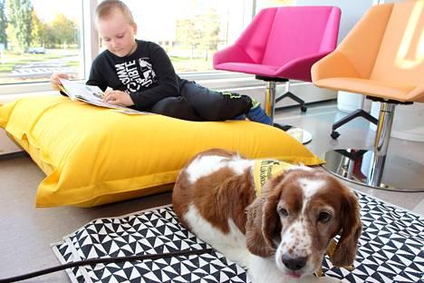 Ekaluokkalainen Elias Kakkuri pääsi lukemaan lukukoira Jooalle Mäntän kirjastossa tiistaina. Töissä ollessaan Jooa on rauhallinen ja kuuntelee, vapaa-ajalla se purkaa energiaa vauhdikkaissa touhuissa koirakaveri Jullen kanssa.