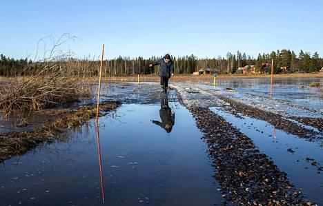 Eeva-Liisa Tuomisen kotitie on ollut useasti poikki kuluneen talven aikana. Tiistaina vesi oli laskenut hieman, mutta mahdolliset hyydetulvat huolettavat.