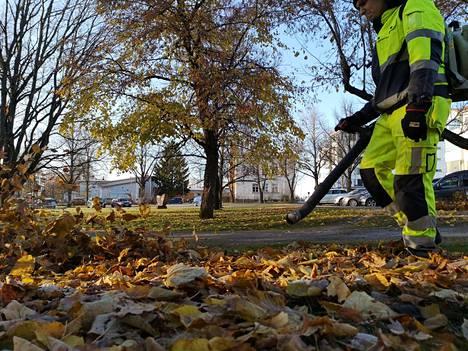 Lehtikasoja ja puutarhajätteitä ei saa jättää puistoalueille ja kaupungin virkistysmetsiin.