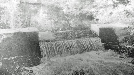 KMV-lehti kertoi 30. toukokuuta 1991, että Kuorikkajärvestä lähtevän ojan suulla ollutta patoa oli omin luvin käyty korottamassa jo kolme kertaa. Luvattomasta teosta aiheutunut vedenpinnan kohoaminen häiritsi järvellä asustavan joutsenpariskuntaa ja pesimäpuuhia uhkasivat tyrehtyä.