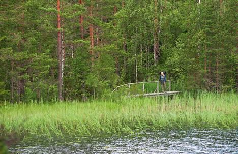 Suomen luonnon päivää on vietetty vuodesta 2013 lähtien. Päivän teemoihin kuuluvat muun muassa retkeily ja yöpyminen luonnon helmassa.
