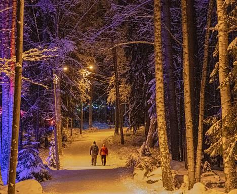 Heska Korhonen kuvasi Kirjaslammen Valometsän uuden vuoden ensimmäisenä talvisena sunnuntai-iltana.