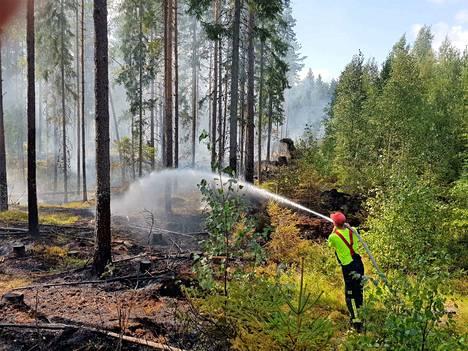 Maasto kuivuu nyt vauhdilla ja metsäpalon riski on suuri.