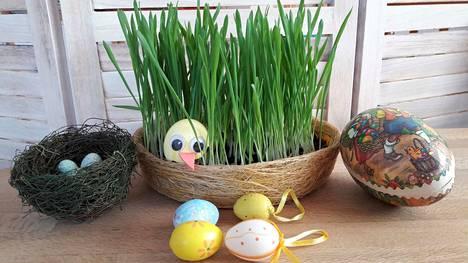 Pääsiäisruoho, munat ja tiput ovat ikivanhoja alkavan kevään ja kasvukauden vertauskuvia.