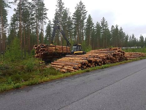 Työt uuden hallin tontilla alkoivat elokuussa puunkorjuulla.