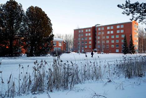 Tommilantien taloissa on ehtinyt asua useampi opiskelijasukupolvi.