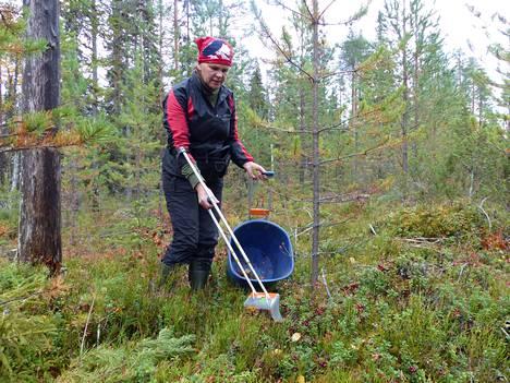 Arja Juntunen on osallistunut marjastuksen MM-kisoihin yhdeksän kertaa.