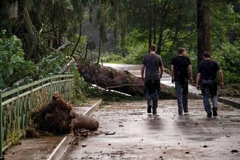 Puunrunko oli kaatunut tielle tulvien ja rankkasateiden seurauksena Echtershausenissa Saksan länsiosissa 15. heinäkuuta.