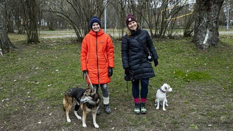 –Koiran ottajalla tarvitsee olla paksu lompakko. Olemme juuri käyneet Binin kanssa aikamoiset hoidot nivelrikon vuoksi, Ylöjärvellä asuva Nina Schäfer sanoo. –Pitää varautua, että aika lailla kaikki muuttuu, ja koirasta tulee elämäntyyli. Ulos lähdetään, oli sää mikä hyvänsä, sanoo Pyynikillä asuva Jedin omistaja Matilda Leppänen.