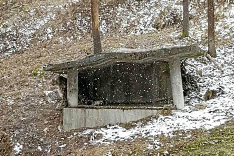 Jamal-uros istuskeli perjantaina yksinään katoksen alla Ähtärin eläinpuistossa.
