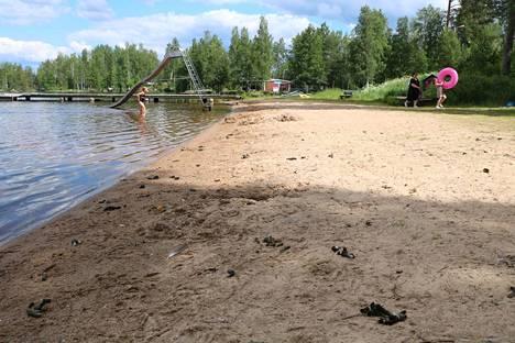 Venesjärven uimarannalla hanhenjätöstilanne on kaksijakoinen. Mitä lähemmäs liukurataa, laituria ja joutsenpelätintä mennään, sitä vähemmän läjiä esiintyy.