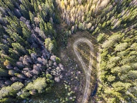 Kirjoittaja esittää ratkaisua, jolla ihminen vähentää oman elinympäristönsä pilaamista. Tämä malli yhtenä muiden joukossa tulisi hyväksyä metsänkäsittelyn valikoimaan, hän sanoo.