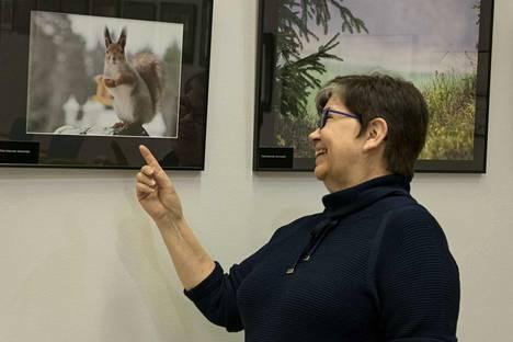 Pirkko Kanervisto ikuisti valokuvaan pihallaan asuvan oravan intensiivisen katseen.