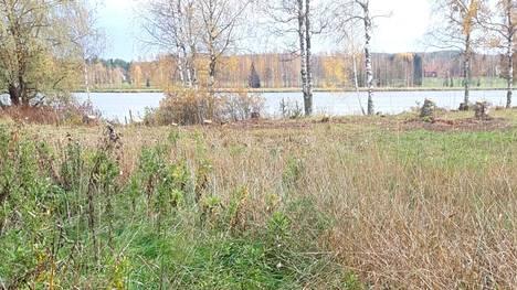 Näkymä avautui myös valokuvassa taustalla näkyvälle Vanajavedelle sen jälkeen, kun puita kaadettiin luvatta lähellä järveä ja kanavaa. Paikka sijaitsee Kumpulankujan tuntumassa.