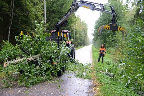 Torstaina Aila-myrsky kaatoi Ulvajanniemessä Kangasalantielle puun, jota kaupunki tuli korjaamaan pian pois tieltä.