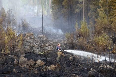 Metsää ja maastoa paloi Ulvilassa vuonna 2018.