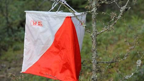 Mäntän Seudun Eräpirkkojen laatima uusi kartta herätti ansaitusti juoksuhaluja, ja Kolhon Loilanniemen rasteille saapui kisaamaan tiistaina 72 suunnistajaa.