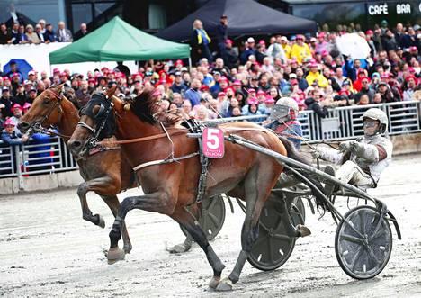 Dijon on Elitloppetin hallitseva voittaja. Pohjoismaiden suurin ravikilpailu käydään toukokuun lopulla.