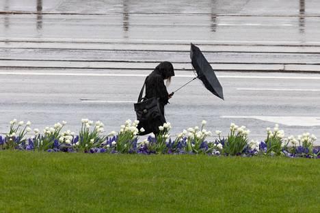 Puuskittainen itätuuli testaa paitsi sateenvarjoja myös sähköverkon toimitusvarmuutta.