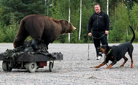 Kauko Karhu