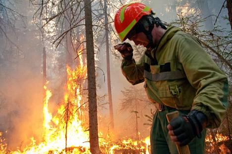 Sammutustyöt jatkuvat Krasnojarskin alueella, missä metsää arvioidaan palaneen miljoonan hehtaarin verran. Suurin osa paloista on mahdollista sammuttaa vain ilmasta käsin.