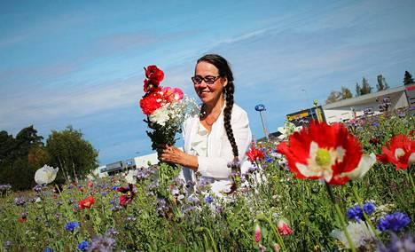 Rudolf Koivun tien varrella sijaitseva kukkapelto sisältää useita eri kasvilajeja. Kukkia saa poimia vapaasti.